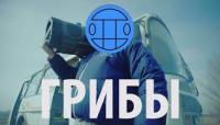 Тает Лёд - клип группы 591 Грибы (Grebz)